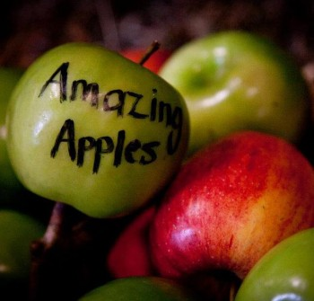 Amazing Apples